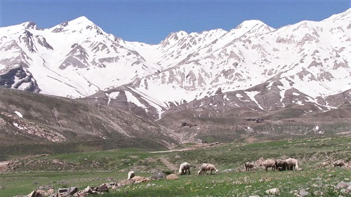 زردکوه بختیاری   عاشقان طبیعت ایران   قله کلونچین   ارتفاع قله کلونچین   زردکوه