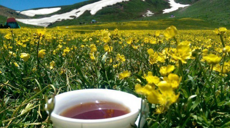 گرمابدر به سرآسب | عاشقان طبیعت ایران | گزارش صعود گرمابدر به سرآسب