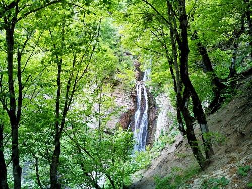 جنگل ابر | عاشقان طبیعت ایران