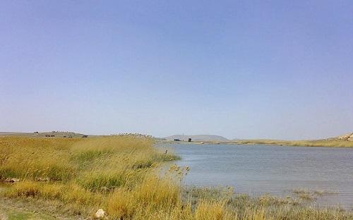 تالاب کانی برازان | عاشقان طبیعت ایران | تالاب کانی برازان مهاباد