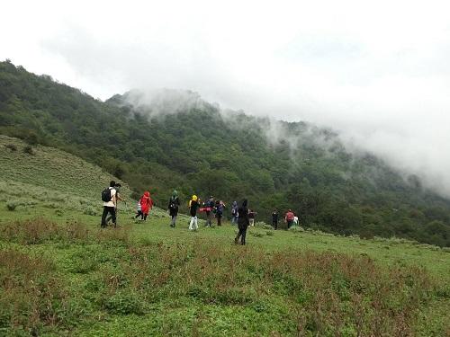جنگل الیمستان | عاشقان طبیعت ایران