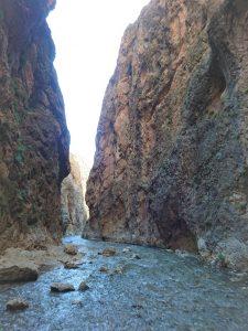 تنگه واشی | عاشقان طبیعت ایران